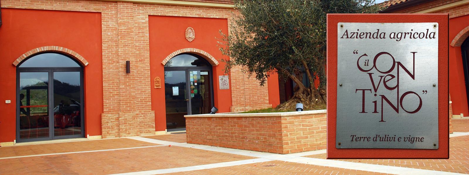 Azienda Agricola Conventino di Monteciccardo